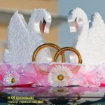 Лебеди на главную свадебную машину